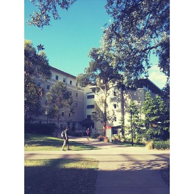 UQ University of Queensland Weather Relax Wonderful