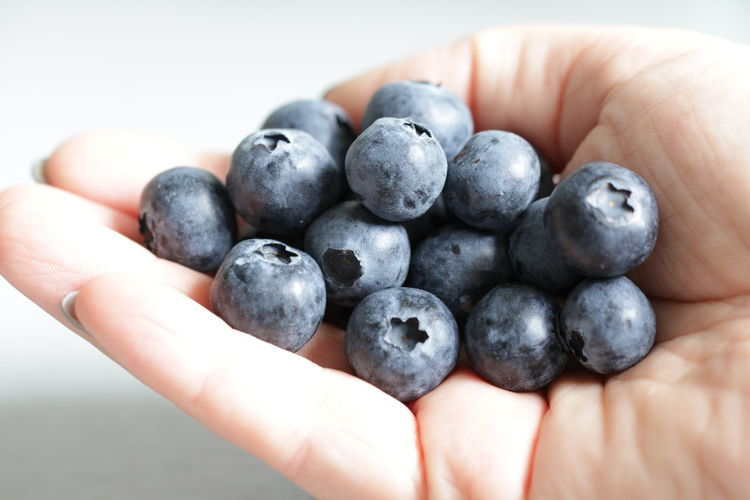 Close-up of hand holding of black berries