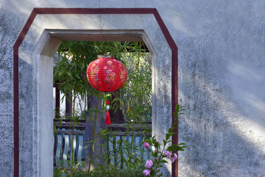 Bright Bright Spot Celebration Day Door Down Festive Flower Illumination Joyful Lantern Light Nature No People Outdoors Patio Red Red Sky Taiwan Tradition Tree Tree Wall