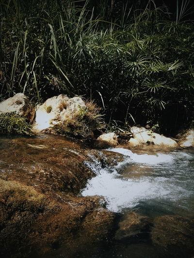 Nature No People Outdoors Pond River Rivers Riverscape Riverside Rock Splash Splashing Stream Water Wildlife