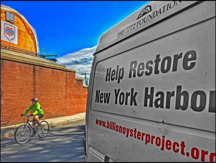 #eyeem on GI _ EyeEm Photowalk in NYC - 9/24/16 #eyeem On GI As I Sees It Bicycler Ecological Restoration Project EyeEm StreetPhotography, NYC Fresh On Market September 2016 IPhone Edits W/ Snapseed The Journey Is The Destination