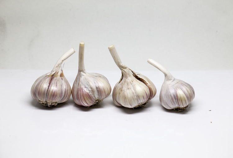 Garlic Spice Vegetable Indoors  Studio Shot Food And Drink Still Life Ingredient Food Freshness White Background Garlic Bulb Copy Space No People Close-up Raw Food Healthy Eating Wellbeing Group Of Objects White Color Garlic Clove Purple