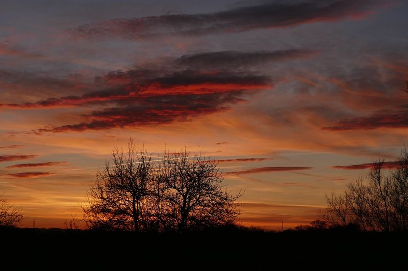 Beauty In Nature Cloud - Sky Dramatic Sky Light & Dark - Nature No People Outdoors Scenics Silhouette Silouette & Sky Sky Sunset Tree