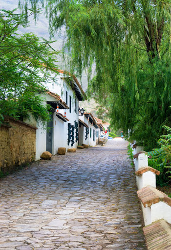 Cobblestone street running through historic Villa de Leyva, Colombia America Architecture Beautiful Boyaca Cobblestone Colombia Colonial Countryside Exterior Façade Historic Historical History Houses Latin Old South Stone Street Town Travel Trees View Villa De Leyva  White