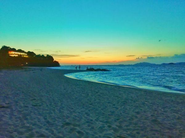 Tree Water Clear Sky Sea Sunset Beach Multi Colored Blue Beauty Sand