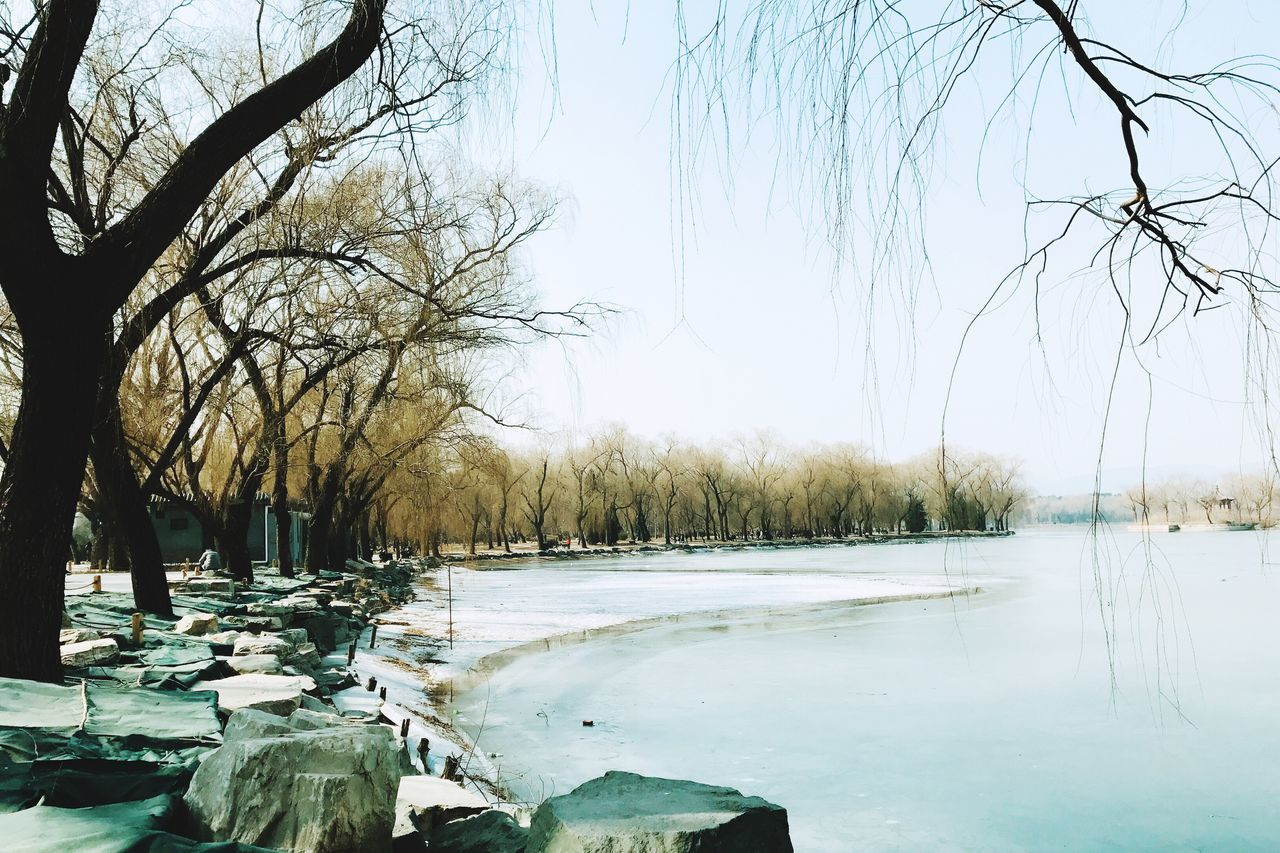 bare tree, cold temperature, water, beauty in nature, tranquility, nature, lake, winter, branch, tranquil scene, snow, clear sky, frozen, outdoors, tree, scenics, no people, day, sky, landscape