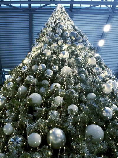 Ladyphotographerofthemonth White Christmas Decoration Part Of Christmas Tree Christmas Balls 1. Advent White Christmas Tree Indoors  Fragility Full Frame No People Indoor Decoration Looking Up Large Christmas Tree Backgrounds Beautiful Scenery