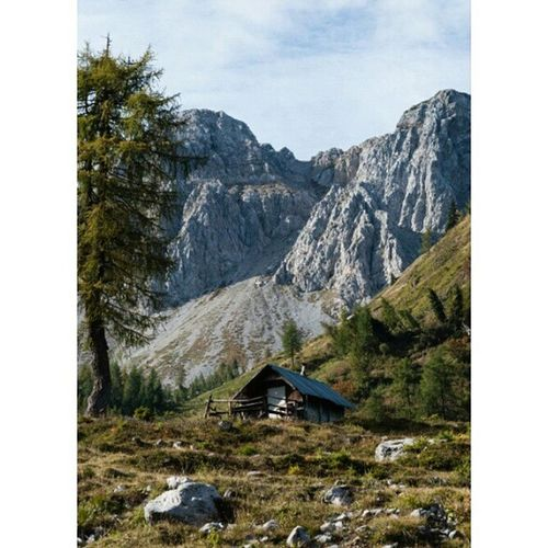 Goodmorning Sauris Alps Fvg Friuliveneziagiulia autumn photography nature mountain alm potd picoftheday potdfvg igersfvg landscape country beautyinnature trk healthylifestyle green trekking sport naturalbackground walking sky forest dolomiti italy