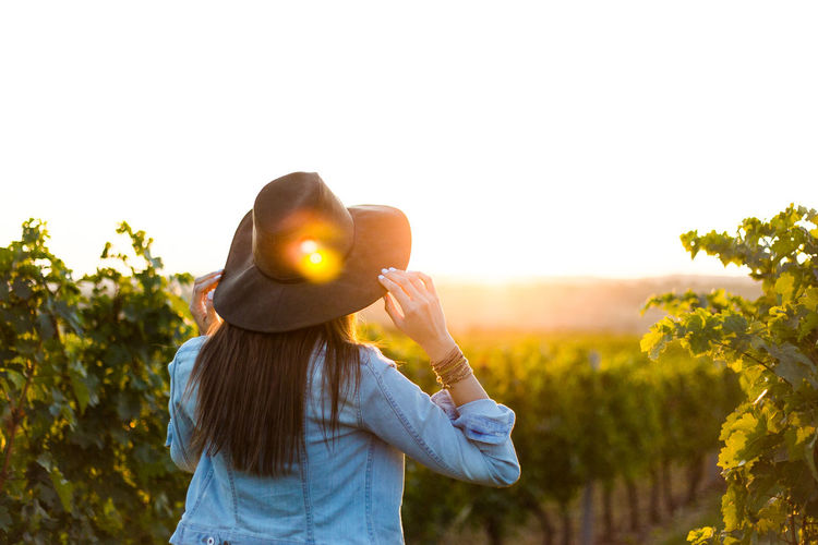 Rear view of woman standing at vineyard against sky during sunset