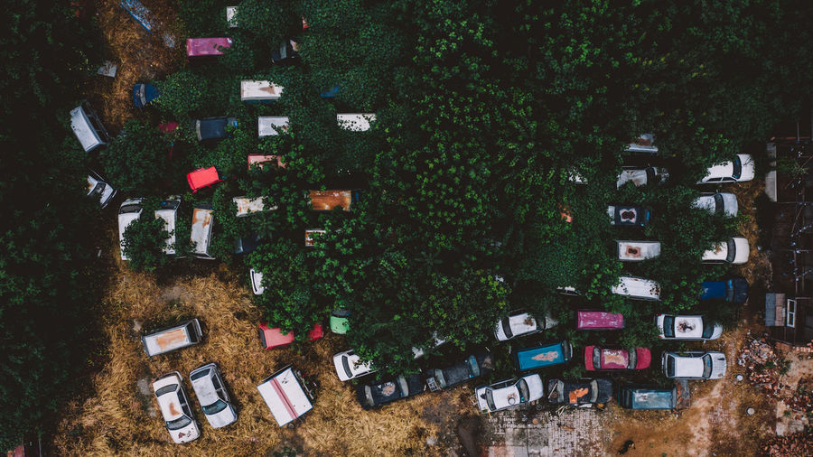 Aerial view of cars parked by trees