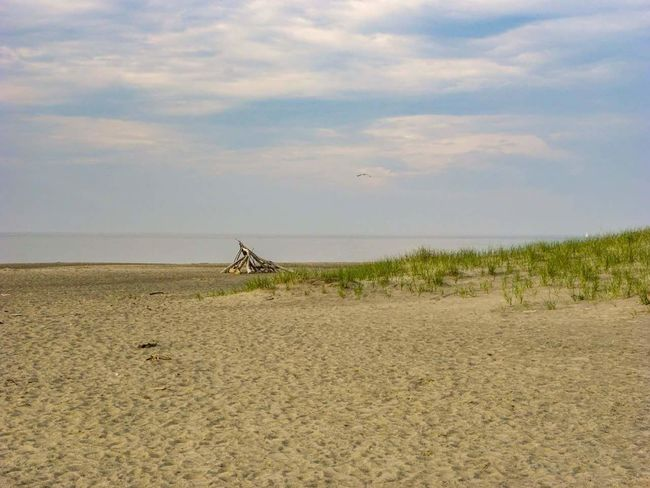 Beach Photography Beachphotography Beach Life Beachday Beach View Hanging Out Check This Out Relaxing Beachside