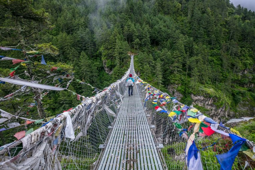A hiker crossing the suspension bridge during hiking to Everest Base Camp Flags In The Wind  Trekker Hiker Solo Traveler! Suspension Bridge Everest Region Lukla Everest Base Camp Trek Hiking Nepal Everest Trail Tree Plant Christmas Nature Celebration Decoration Day Green Color Outdoors