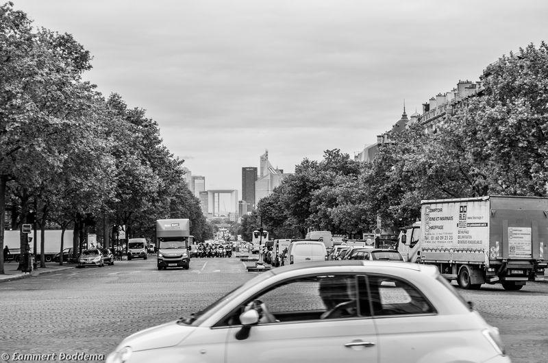 City Car Tree Mode Of Transport Land Vehicle City Day Outdoors Sky Travel Destinations Blackandwhite Blackandwhite Photography Eye4photography  Black & White EyeEm Best Shots Transportation EyeEm Best Edits EyeEm Gallery