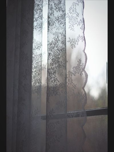 Morning Light Window Hello World