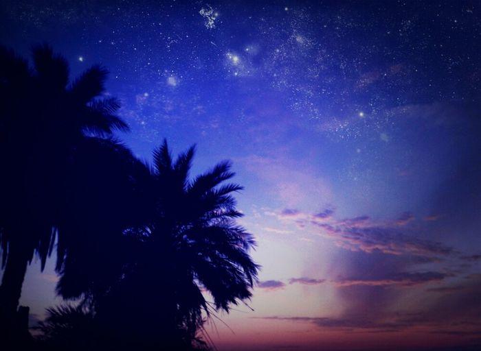 صورة صورتها قبل فترة .. جربت احط عليها نجوم بالفوتوشوب، عشان كذا مارح انزلها فلكر *-* .. *اول صورة*