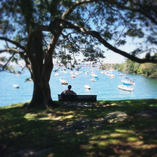 Enjoying The Sights Sydney Hipstamatic Iphone6