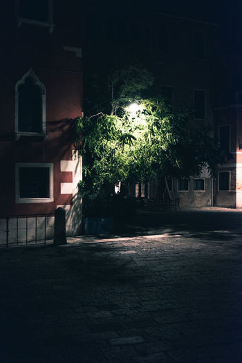 Architecture Building Building Exterior Built Structure City Dark Direction Growth House Illuminated Nature Night No People Outdoors Plant Residential District Spooky Street Tree Venice Window