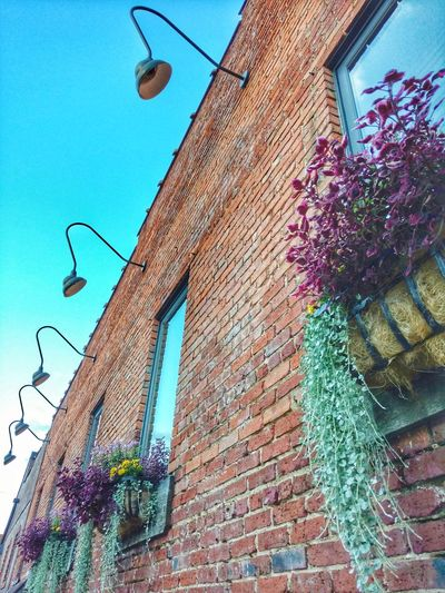 Downtown Beauty! Architecture Building Exterior Built Structure Low Angle View Downtown Waynesville, NC History Historic Downtown Window Reflections Window Dressing Window Flower Boxes Beautiful Blue Sky EyeEm Gallery EyeEm Best Shots Cell Phone Photography Old Brick Building