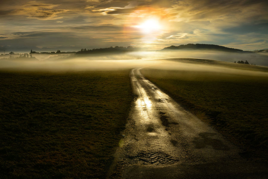 Morning Light Morning Sun Beauty In Nature Day Field Fog Landscape Nature No People Outdoors Road Scenics Sunlight Sunset