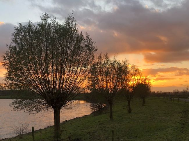EyeEmNewHere EyeEm Nature Lover EyeEm Best Shots Sunset Nature Beauty In Nature Tranquil Scene Tranquility Cloud - Sky Landscape WeatherPro: Your Perfect Weather Shot No People Autumn Iphone8plus Luchten Herfst Orange Color Scenics