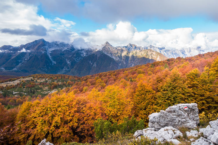 Beauty colorful autumn mountain landscape with cloudy sky. Beauty In Nature Cloud - Sky Mountain Sky Scenics - Nature Autumn Landscape Tranquil Scene Environment Tranquility Nature Plant Change Tree Day No People Mountain Range Non-urban Scene Rock Outdoors Snowcapped Mountain Mountain Peak Fall Autumn