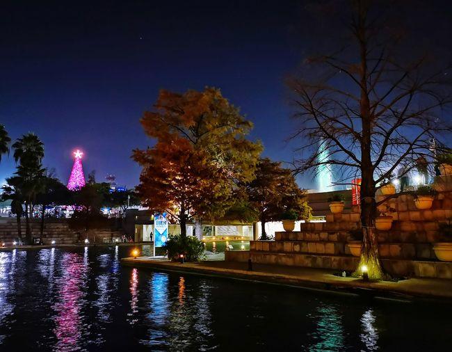 Dancing lights Nightphotography Night EyeEmNewHere City Tree Water Illuminated Swimming Pool Nightlife Reflection Cityscape Multi Colored Sky Reflecting Pool
