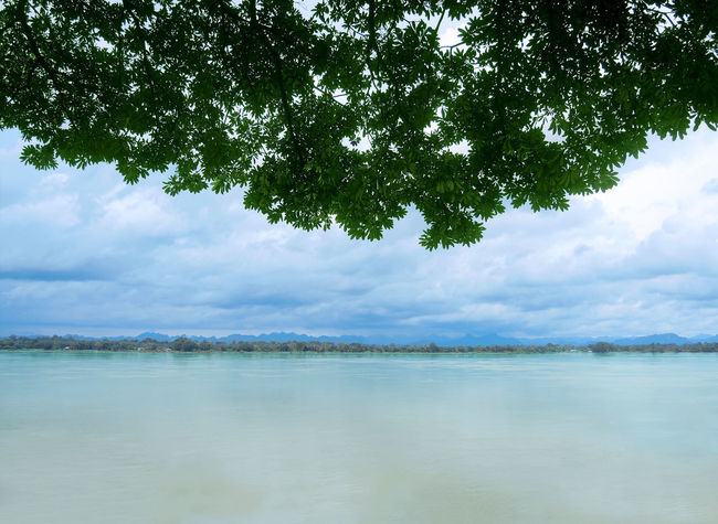 Green leaves hanging down in the foreground against of blue sky on lake view. Coastline Beauty In Nature Blue Cloud - Sky Coast Idyllic Lake Landscape Nature Non-urban Scene Outdoors Plant Reflection Scenery Scenics - Nature Sky Tranquil Scene Tranquility Tree Turquoise Colored Water Waterfront