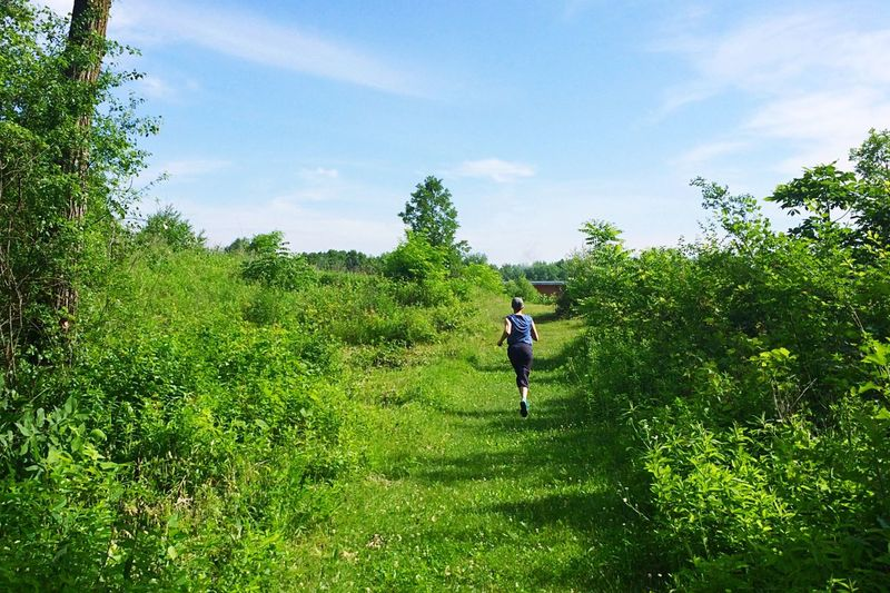 Women Running Runners Running Activity Summer Trail Running Trail Wisconsin Plant Tree Green Color Sky Growth Real People Leisure Activity One Person Cloud - Sky Nature Day Field Sunlight Grass Beauty In Nature