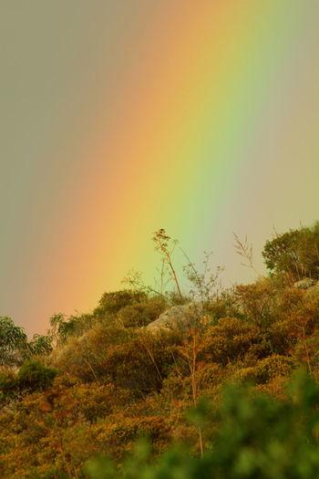 Rainbow's end Color Colour Hillside Multicolor Rainbow Rainbows End