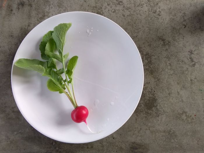 High angle view of berries in bowl on table