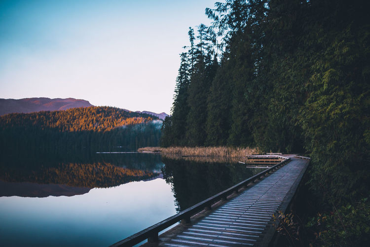Evening walks at the lake Landscape Lake Pacific Northwest  Wanderlust Nature Sunset Neverstopexploring  Explore PNW Tree Water Autumn Lake Forest Reflection Mountain Sky Fall Tranquil Scene Calm Scenics Lakeside Non-urban Scene Tranquility Idyllic Pine Tree Pine Woodland Autumn Collection
