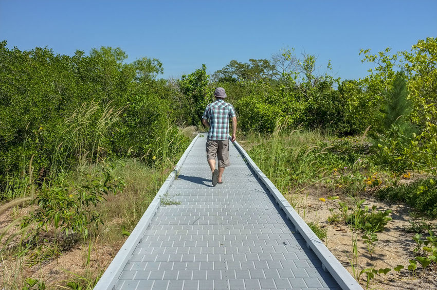 Man walking away on the Mangrove Boardwalk in East Point, in Darwin, Northern Territory, Australia. Australia East Point Darwin Australia East Point Mangrove Boardwalk East Point Reserve Northern Territory Australia Boardwalk Casual Clothing Day Full Length Green Color Growth Leisure Activity Lifestyles Nature One Person Outdoors Plant Real People Rear View Sky Standing Sunlight Tree Walking Summer Exploratorium #FREIHEITBERLIN The Traveler - 2018 EyeEm Awards Be Brave A New Beginning