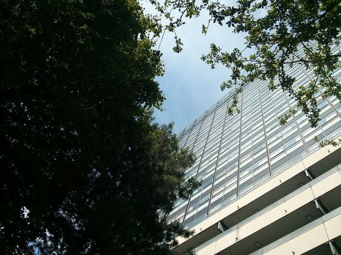 Großer Krankenhaus Klotz inmitten schönen grüns. Weder hübsch noch funktional
