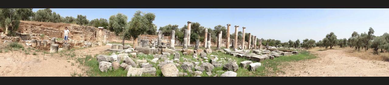 Ancient Ancient City Nysa Tree Sky Landscape