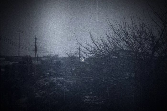Beauty In Nature No People Contryside Nonurban Silhouette Fog Nature Snow Snap Snapshots Of Life Snapshot Nature IPhoneography Noise EyeEmNewHere Blackandwhite Monochrome Gunma 群馬 세계 Nopeople NoPeopleAround Black And White Friday Shades Of Winter