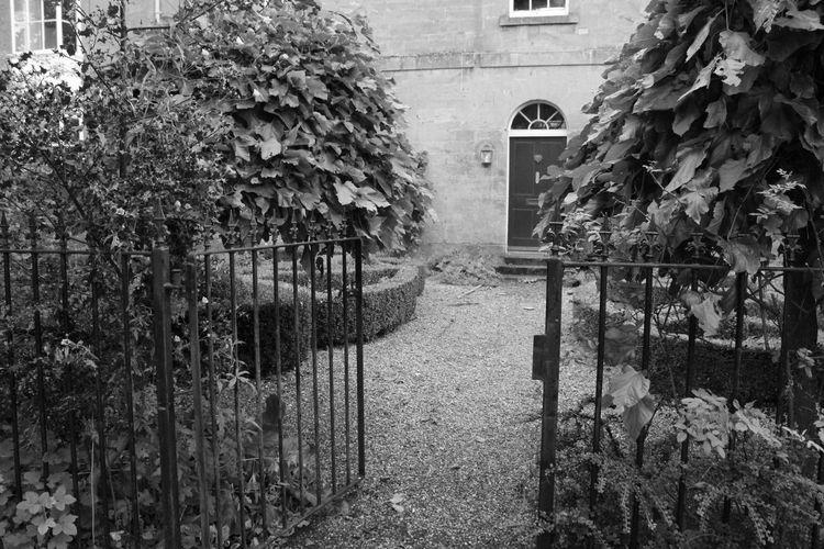 Architecture House Walkway Pathway Monochrome Photography Black And White Gate