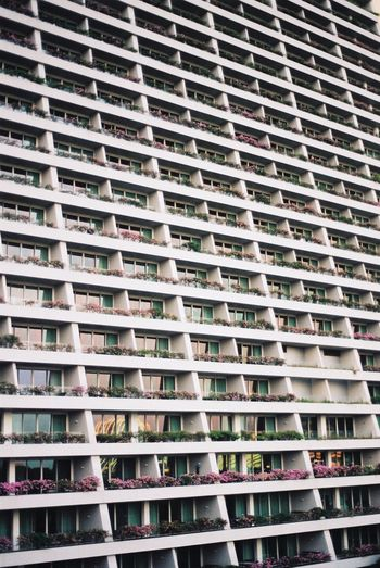 Filmisnotdead Analogue Photography Film Photography 35mm Film Architecture Full Frame Building Exterior Built Structure No People Building In A Row Apartment City Residential District Order Pattern