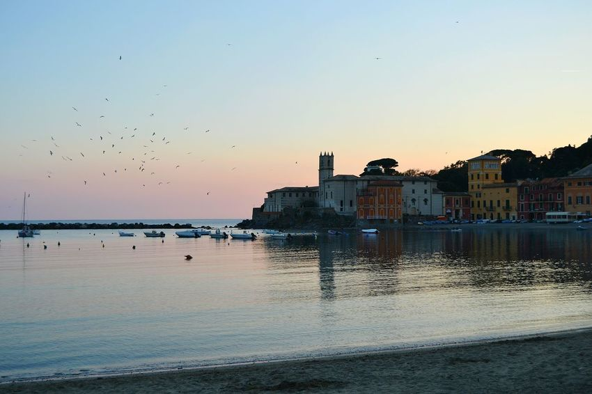 Baia Del Silenzio Liguria Beauty In Nature Liguria,Italy No People, Beach Sea And Sky Tranquility EyeEm Gallery Sestri Levante Day Nature Sky No People Landscape Water Sand Sea Travel Destinations Outdoors Tranquil Scene Scenics