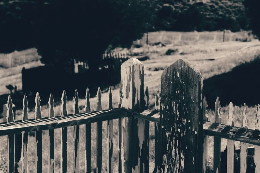 Dark🌌 By Tisa Clark Black & White By Tisa Clark Wood - Material Railing Outdoors Day No People Focus On Foreground Tree Wooden Post Close-up Nature Gravestone Darkness And Light Shadows & Lights Dark Photography Blackandwhite Tombstone Shadow Cemetery