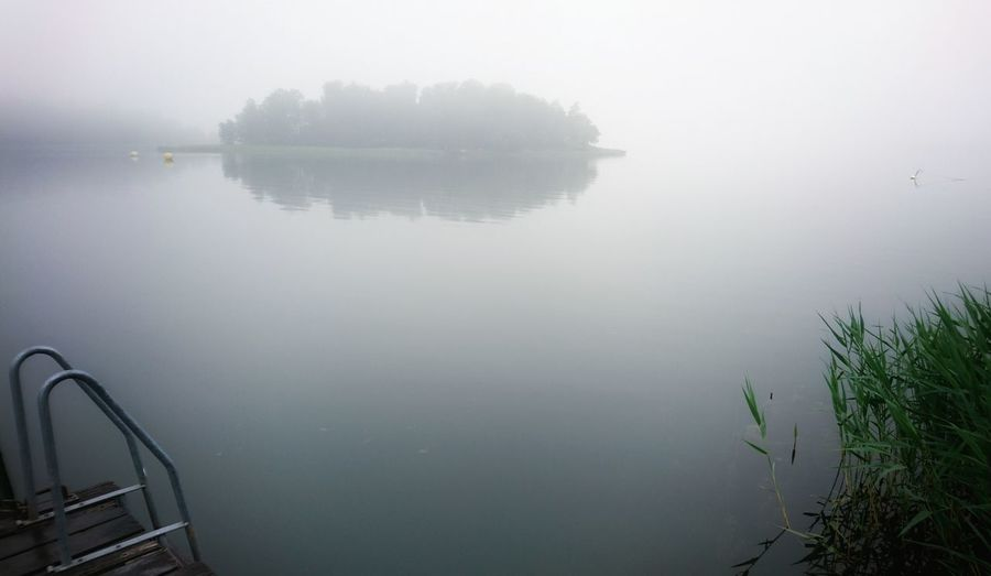 Calmness of mind. Hanging with my phone Time To Reflect Sony Xperia Hanging Out Nature_collection Natural Beauty Sea Foggy Fog Check This Out Reflections Mindfulness Mind Wondering Swimmers Swedish Summer Swimming