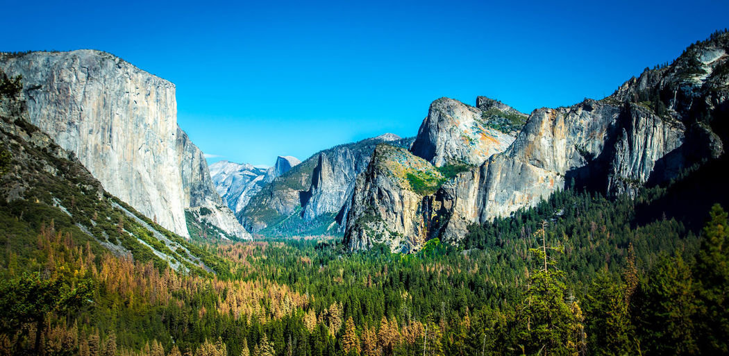 Beauty In Nature Blue Clear Sky Day Geology Landscape Majestic Mountain Nature Non-urban Scene Outdoors Physical Geography Pinetrees Remote Rock Formation Scenics Sky Solitude Tranquil Scene Tranquility Yosemite Yosemite National Park Yosemite Valley