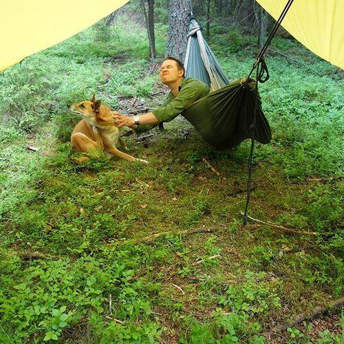 Ruffday thanks mosquitoes and horseflies! Ruffdog Outdoors Outdoor camping DDhammocks tttm tickettothemoon dogcamping Farmore bushcraft