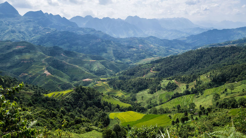 Karst mountain in Northern Vietnam Beauty In Nature Day Green Color High Angle View Landscape Mountain Mountain Range Nature No People Outdoors Scenics Sky Tranquil Scene Tranquility Tree