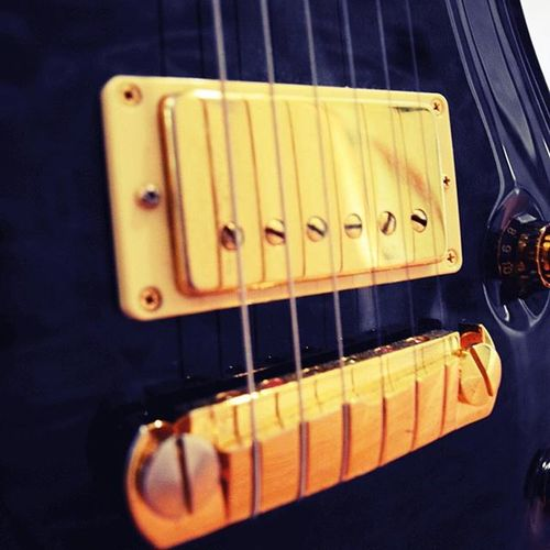 Guitar PRS PaulReedSmith Custom22 Rock Metal Blue Gold Tomcat Explore Photography Photo Meow Pickups 6string