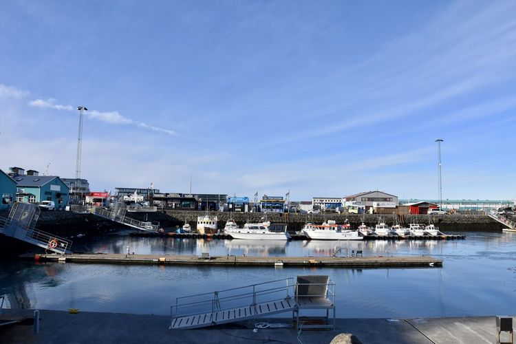 Iceland Reykjavik Architecture Blue Building Exterior Built Structure Business Day Fishing Industry Harbor Mode Of Transportation Moored Nature Nautical Vessel No People Outdoors Pier Port Reflection Sailboat Sky Transportation Water Waterfront Yacht