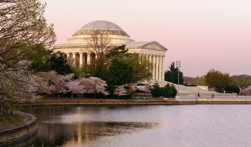 Capital Cities  Cherry Blossoms Here Belongs To Me International Landmark Jefferson Lake Lincoln Memorial Monument Pastel Photography In Motion Sightseeing Sun Sunrise Things I Like Tree Urban Spring Fever USA Washington Washington, D. C. Showcase April The KIOMI Collection