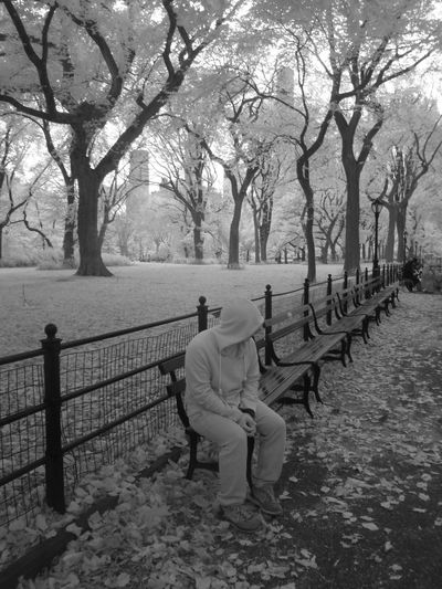 Full length of man sitting on bench at park during autumn