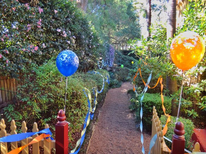 Garden path decorated with steamers and balloons Garden Path Garden Decoration Decorated Balloons Streamers Festive Decorations Garden Photography Garden Gate Backyard The Rise Of Nature Foliage Trees Shrubs Plants Path Party Background Backgrounds Nature Hedges Two Is Better Than One Home Is Where The Art Is Colour Of Life Paint The Town Yellow