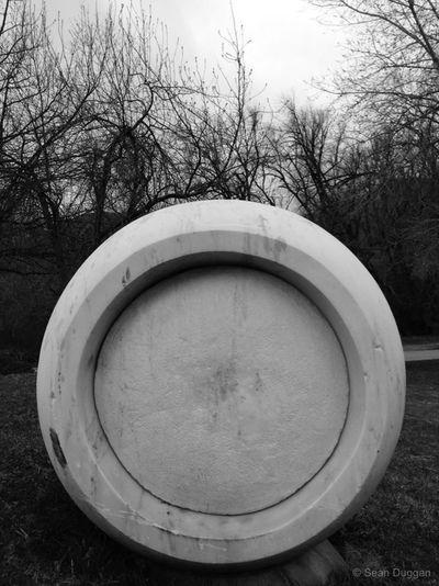 Stone Circle & Winter Trees