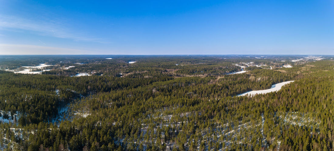 Forest in Finland Aerial View Beauty In Nature Day Forest Growth Landscape Mountain Nature No People Outdoors Scenics Sky Social Issues Travel Destinations Tree